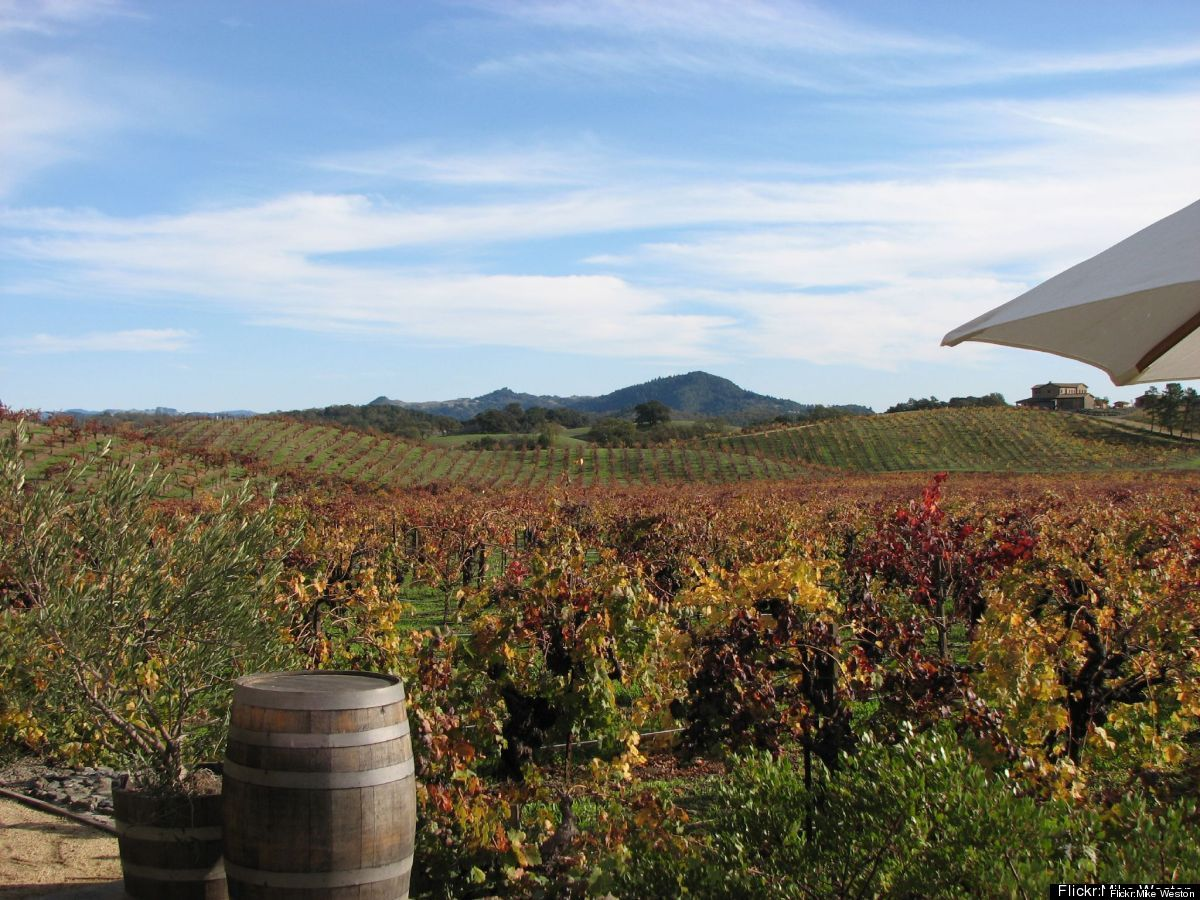 A short drive north of San Francisco, Northern California's wine region – comprising renowned valleys throughout Napa and Son