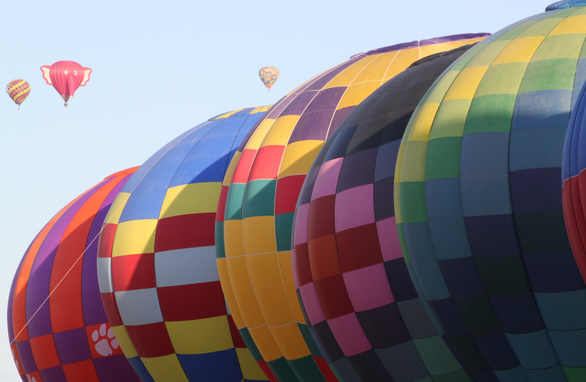 Hot air balloons inflate during the mass ascension at the 40th Albuquerque International Balloon Fiesta in Albuquerque, N.M.,
