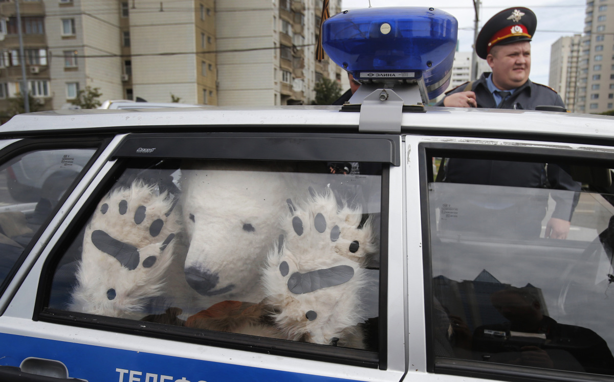 A Greenpeace activist, dressed as a polar bear, sits inside a police car after being detained outside Gazprom's headquarters