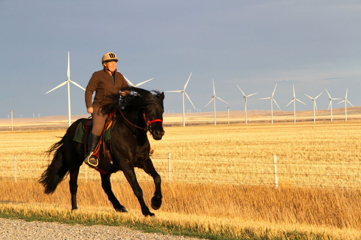 Heidi Eijgel lives on a horse farm surrounded on three sides by the Summerview wind farm in southern Alberta. Photo David Dod