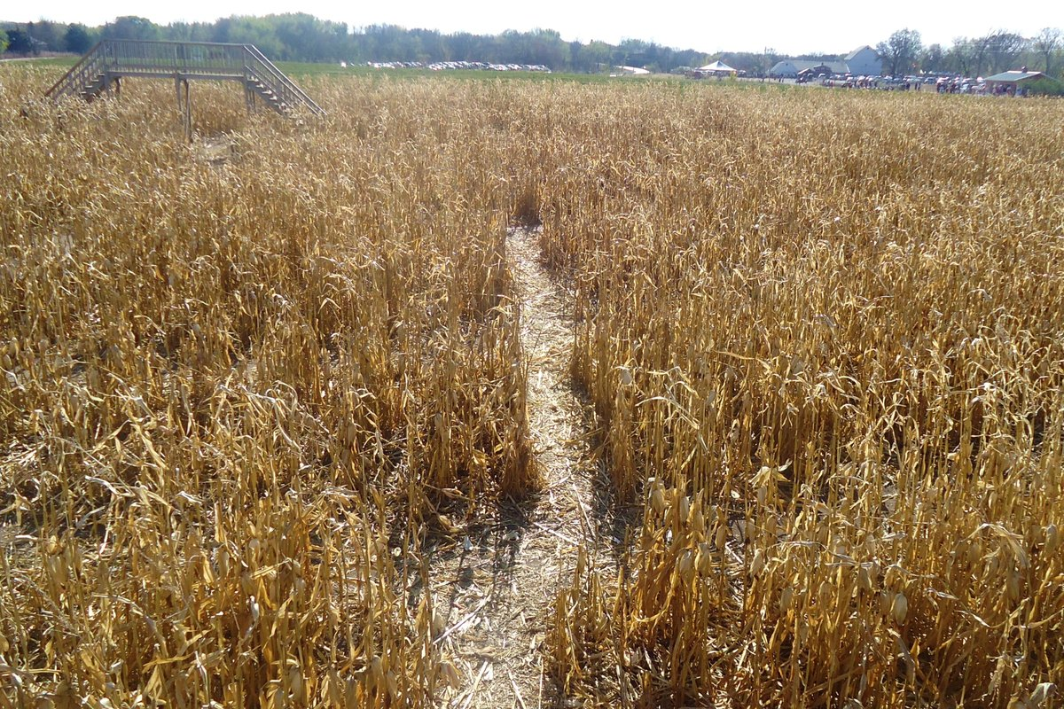 If you're all about fall, you might have a visit to a corn maze scheduled into one of your weekends. That's a good plan -- sp