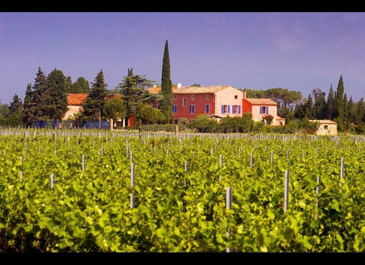 Possibly the least intimidating wine region in France, the Languedoc-Roussillon is sunny, easygoing, and just a short drive a