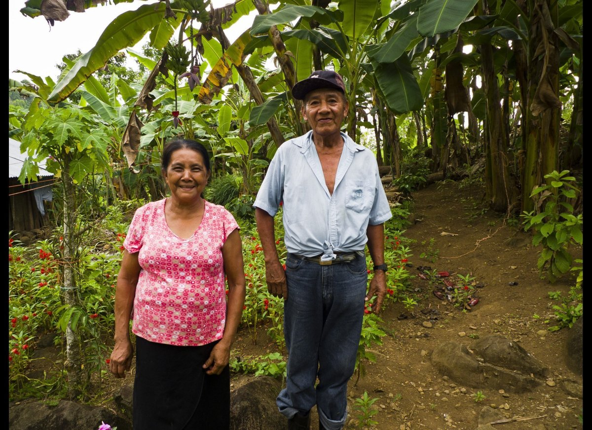 This is the couple that we bought our coffee starts from. They inter-crop coffee amongst banana, ginger, papaya and more.