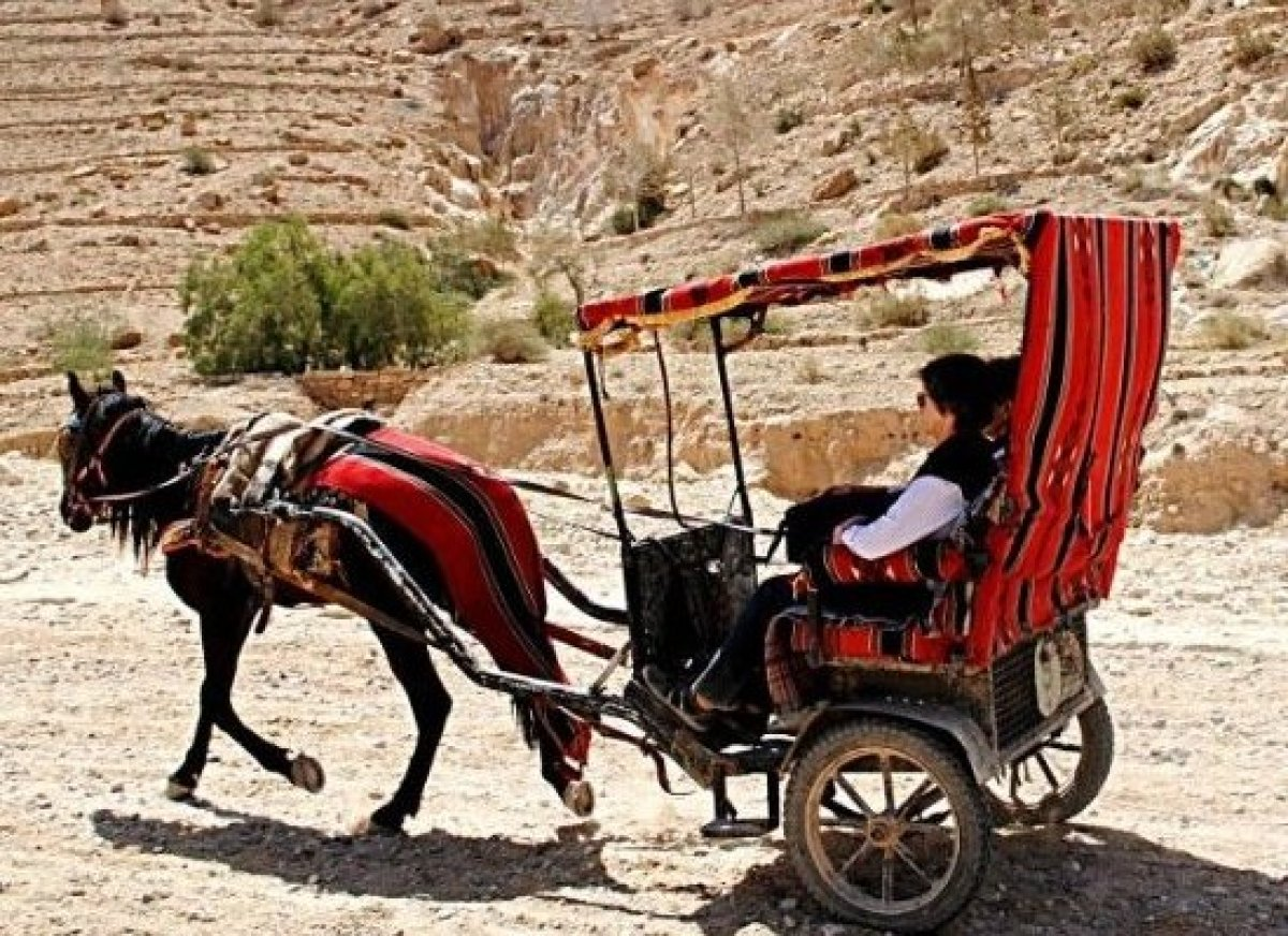 Visitors enjoy chariot comforts to and from the Treasury in Petra .