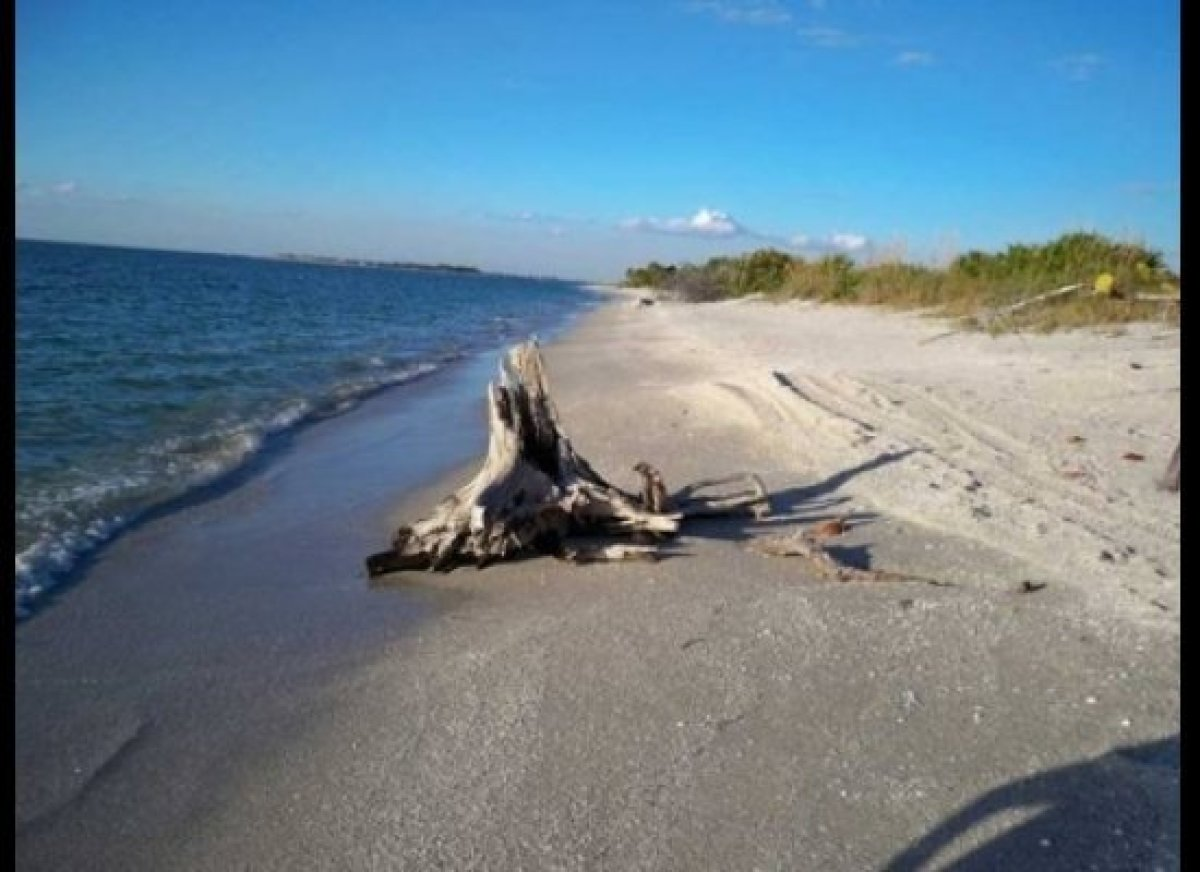 Pine Island Beach Florida The Best Beaches In World