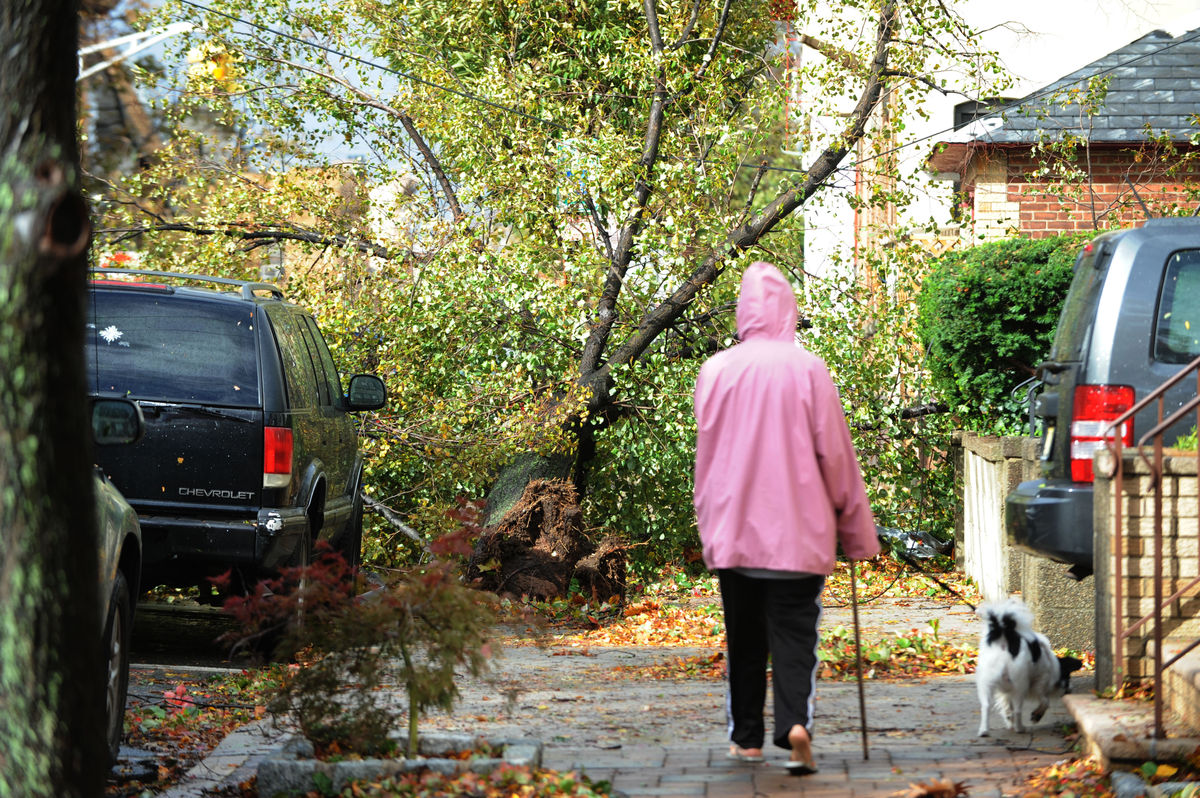 A resident makes their way through a gauntlet of downed trees and wires at Jane St. and Palisade Ave. in the Weekhawken Town