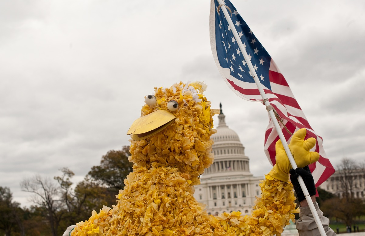 A person in a costume of Sesame Street character Big Bird waves a US flag in front of the Capitol during the 'Million Puppet