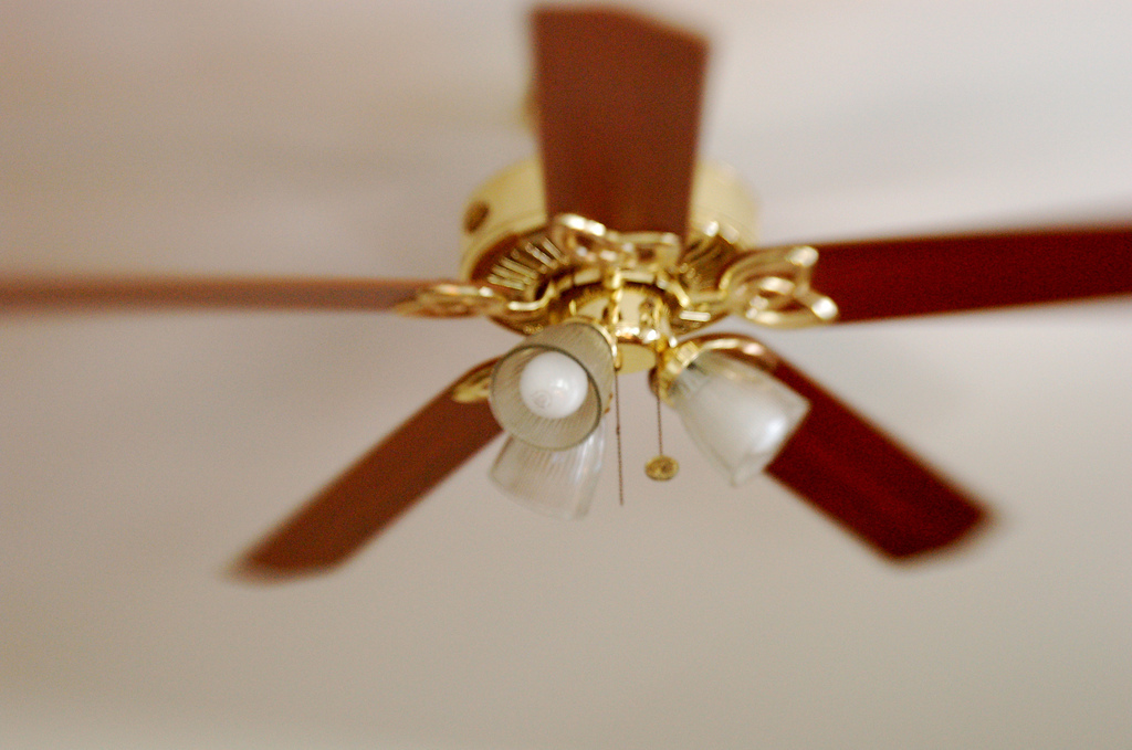 If you haven't checked it recently, chances are your ceiling fans are adorned with an unsightly layer of dust. Use a step sto