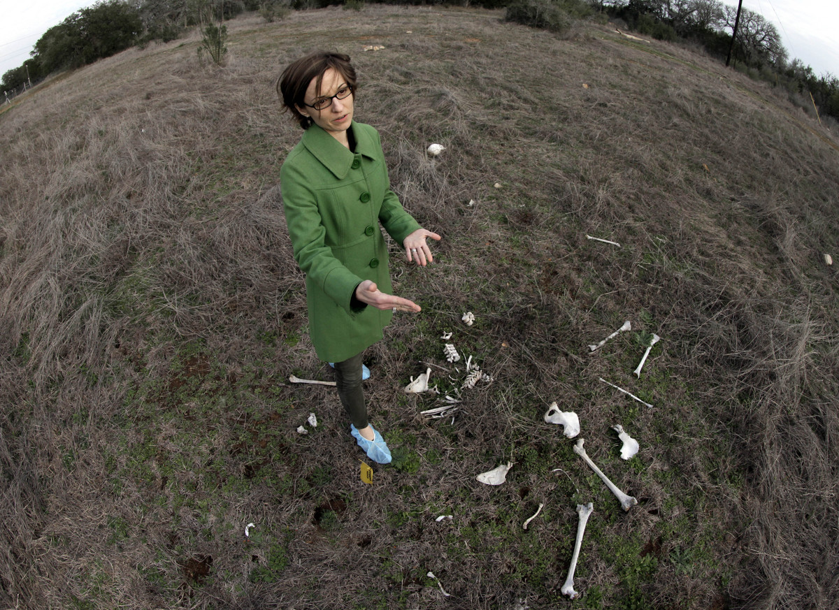 Kate Spradley, an assistant professor at Texas State University, stands over the skeletal remains of Patty Robinson at the sc