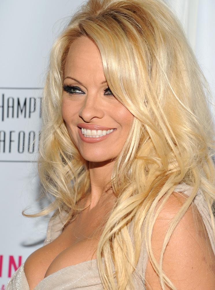 "Pamela Anderson is a <a href=""http://news.google.com/newspapers?id=I-wyAAAAIBAJ&sjid=fQgGAAAAIBAJ&pg=6477,5475629&dq=pamela+a"