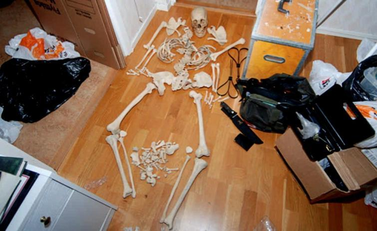 Skeleton found in Swedish Woman's house. A woman in western Sweden who was arrested after police found skeletons in her apart