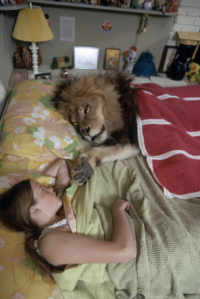 Future actress Melanie Griffith lies in bed beside her pet lion Neil, who lies under a blanket, in Sherman Oaks, California,