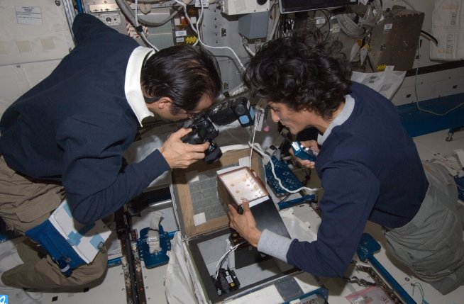 Astronauts Joe Acaba and Sunita Williams photographing the jumping spider in her space flight habitat on board the Internatio