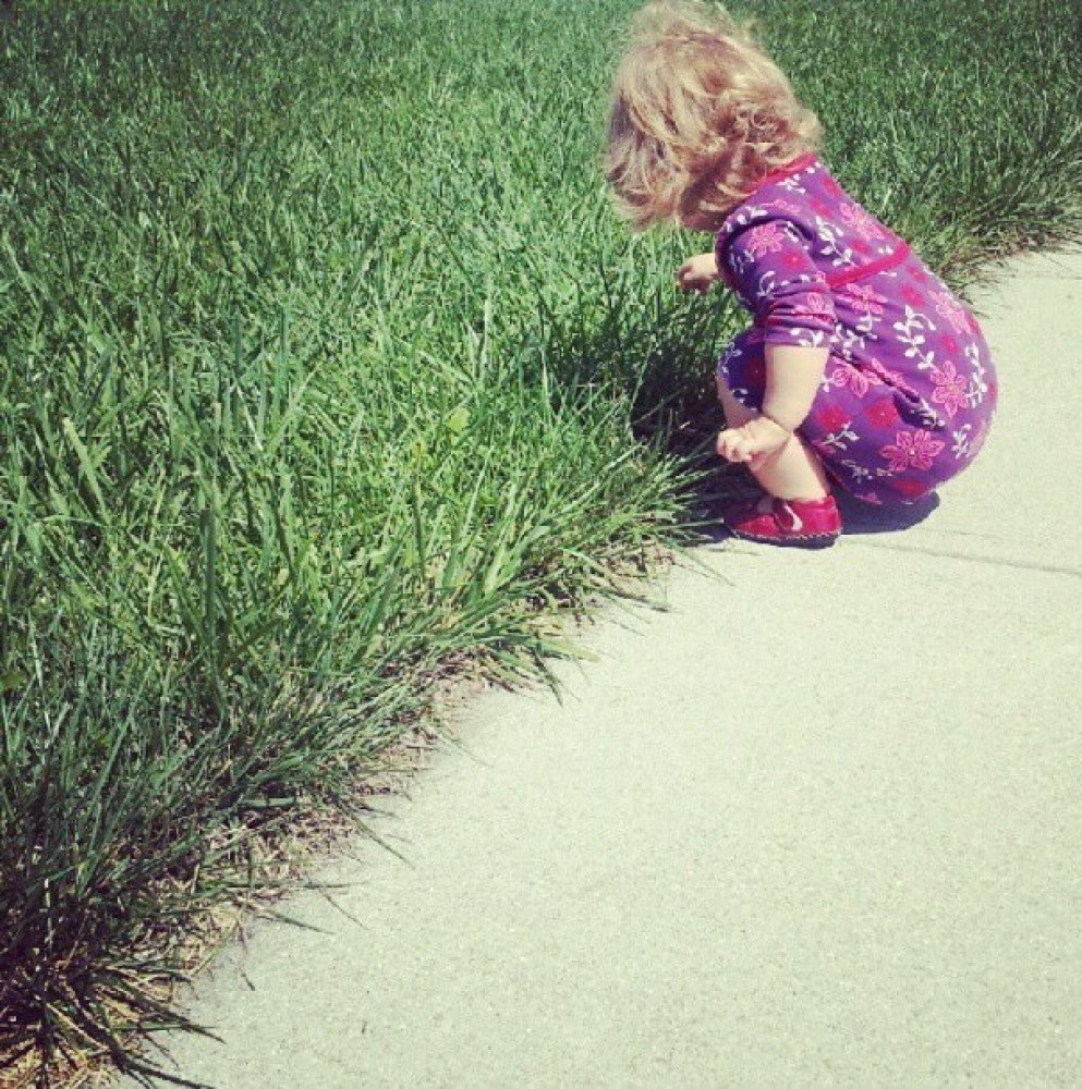 """This was one of her first documented squats. On Instagram it was titled """"Vivi's dandelion picking service. A penny a pop!"""""""