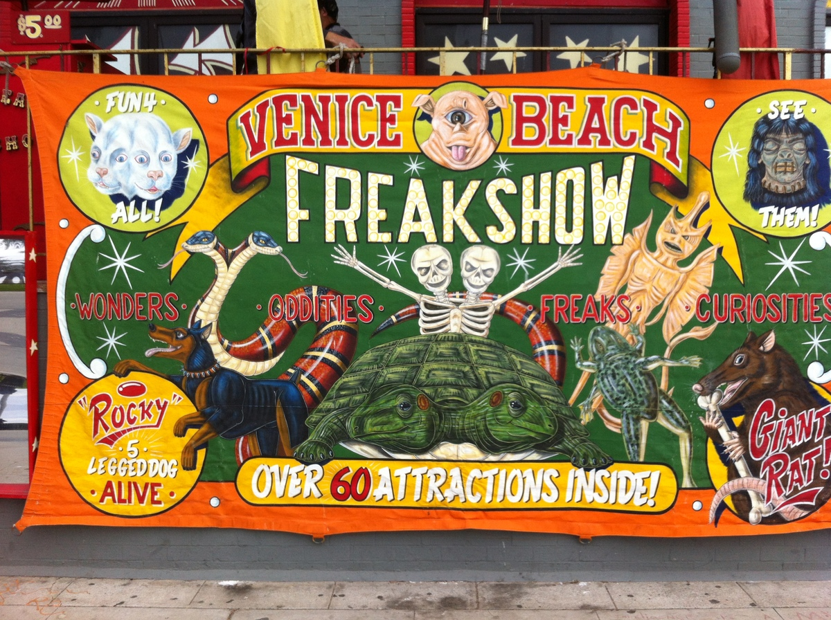 For seven years, the Venice Beach Freakshow has been the home to all sorts of bizarre sites, both human and animal.