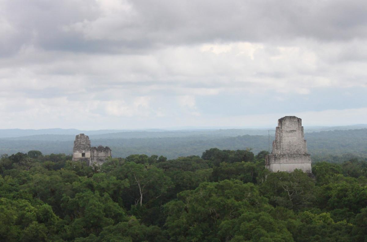 A Tikal panorama.