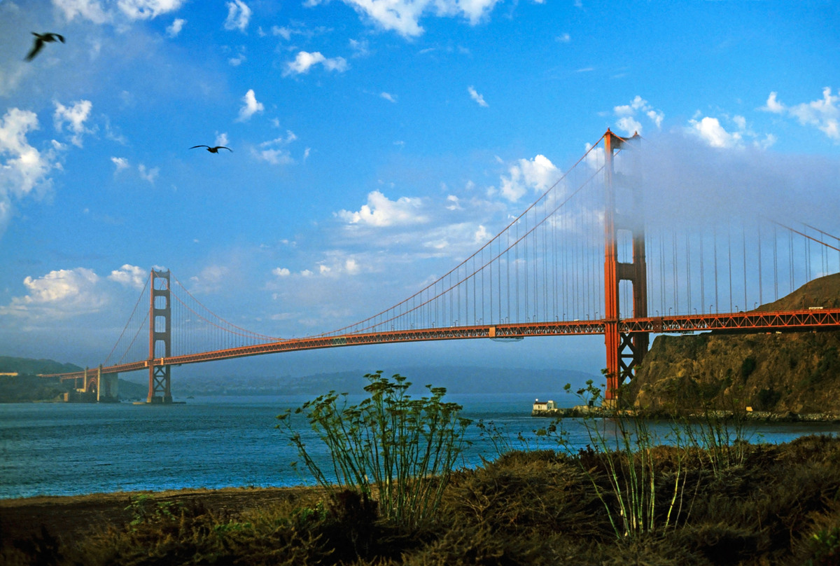 """""""Walk across the Golden Gate Bridge! I've been here my whole life and have never done it.""""  <em>- Robin Wilkey</em>"""
