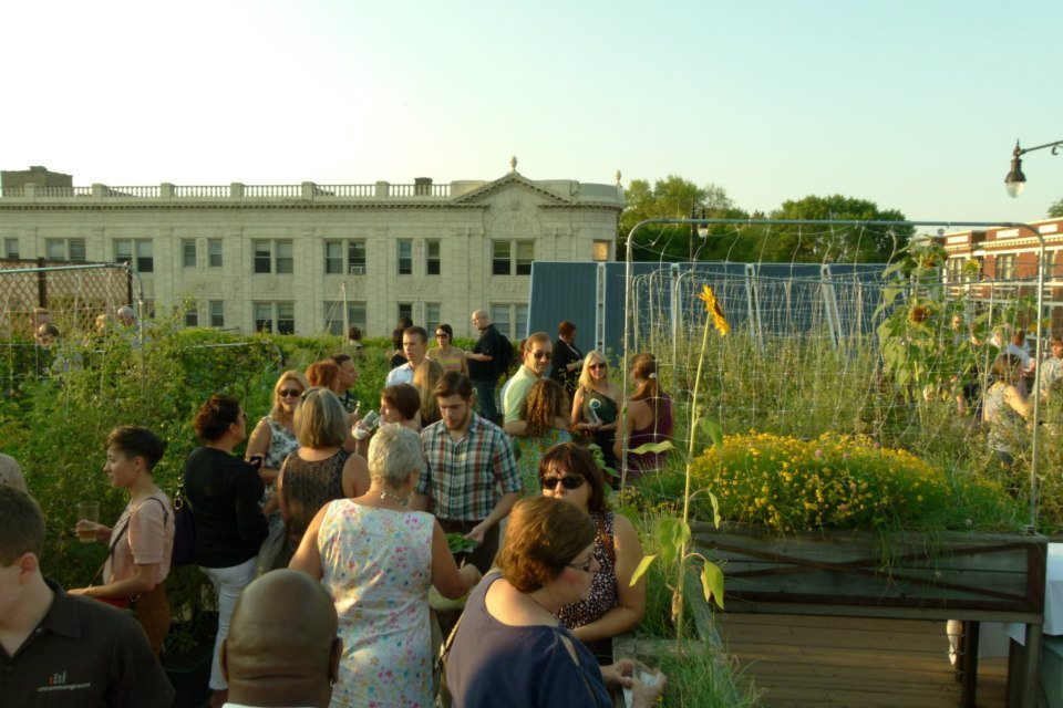 A reception on Uncommon Ground's rooftop farm in Chicago.