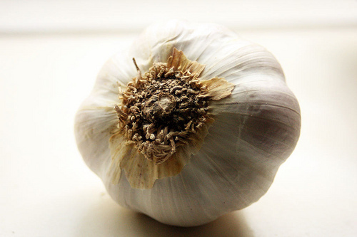 The anti-microbial properties of this pungent bulb (and its relative, the onion) can fight off certain bacteria and viruses,