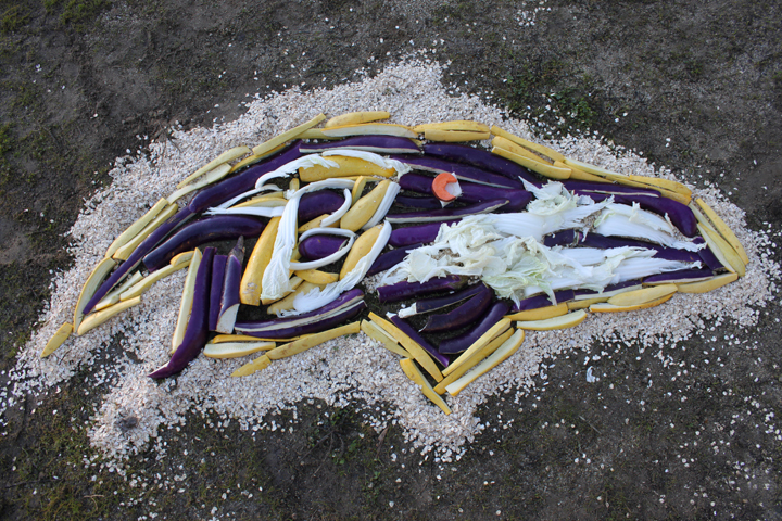 A rhino at the San Francisco Zoo ate the ravens for breakfast in honor of the Super Bowl.