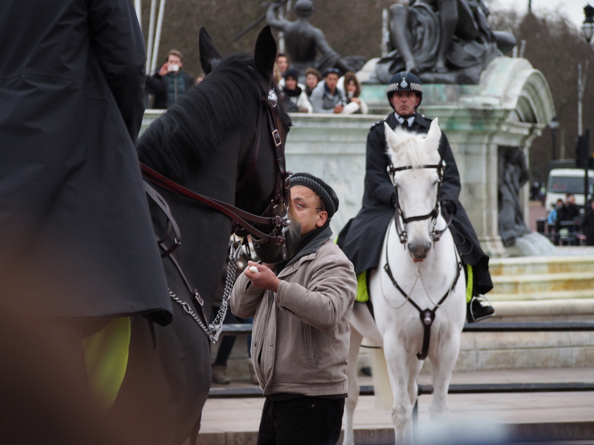 Talhat Rehman wields two knives during the changing of the guard at Buckingham Palace on Sunday Feb. 3, 2013.