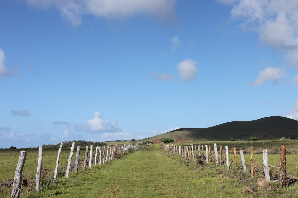 Farm roads and walking paths criss-cross the island, offering dozens of routes for hikes that range from walk in the park to