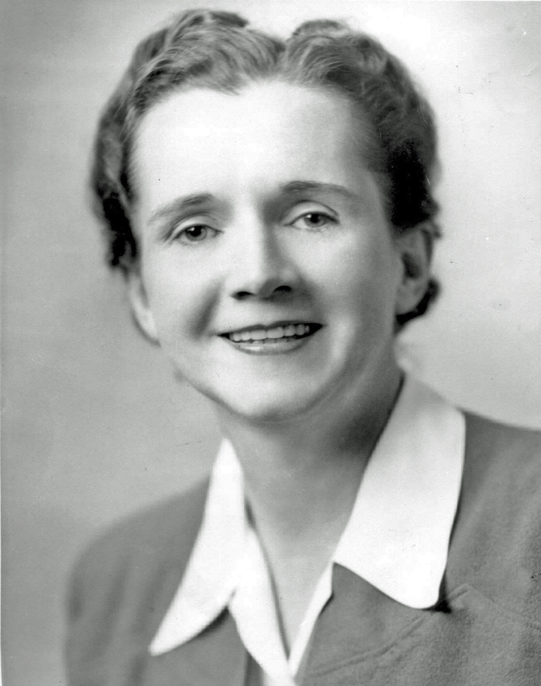"Rachel Carson is often credited with launching <a href=""http://www.fws.gov/northeast/rachelcarson/carsonbio.html""> modern env"