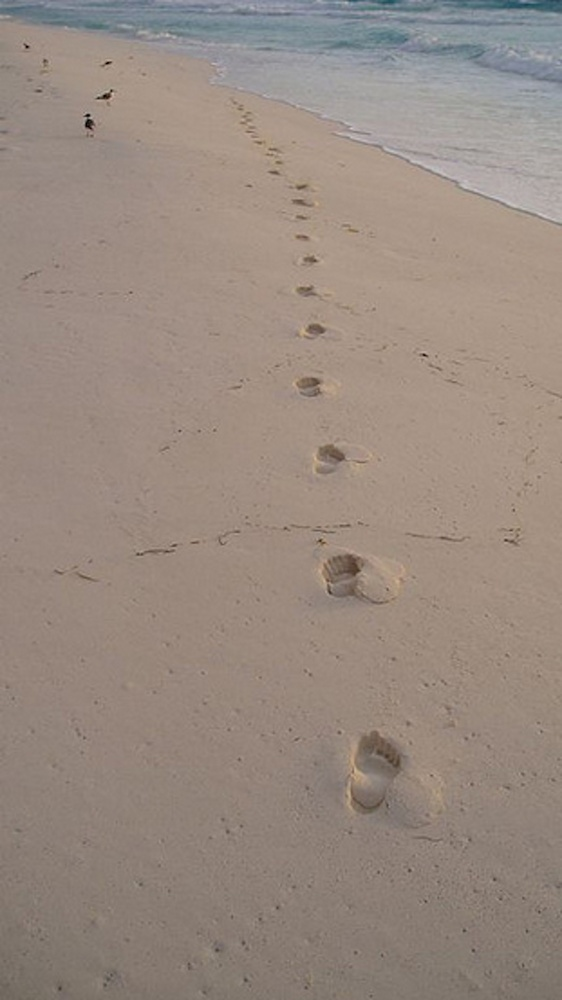 Close your eyes and kick your shoes off and take slow, easy, deep breaths.   Visualize walking on the soft sand and flexing y
