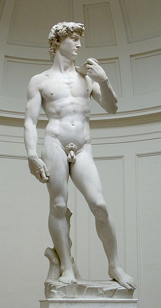 Both the Pieta and the statue of David were sculpted before Michelangelo was 30 years old.
