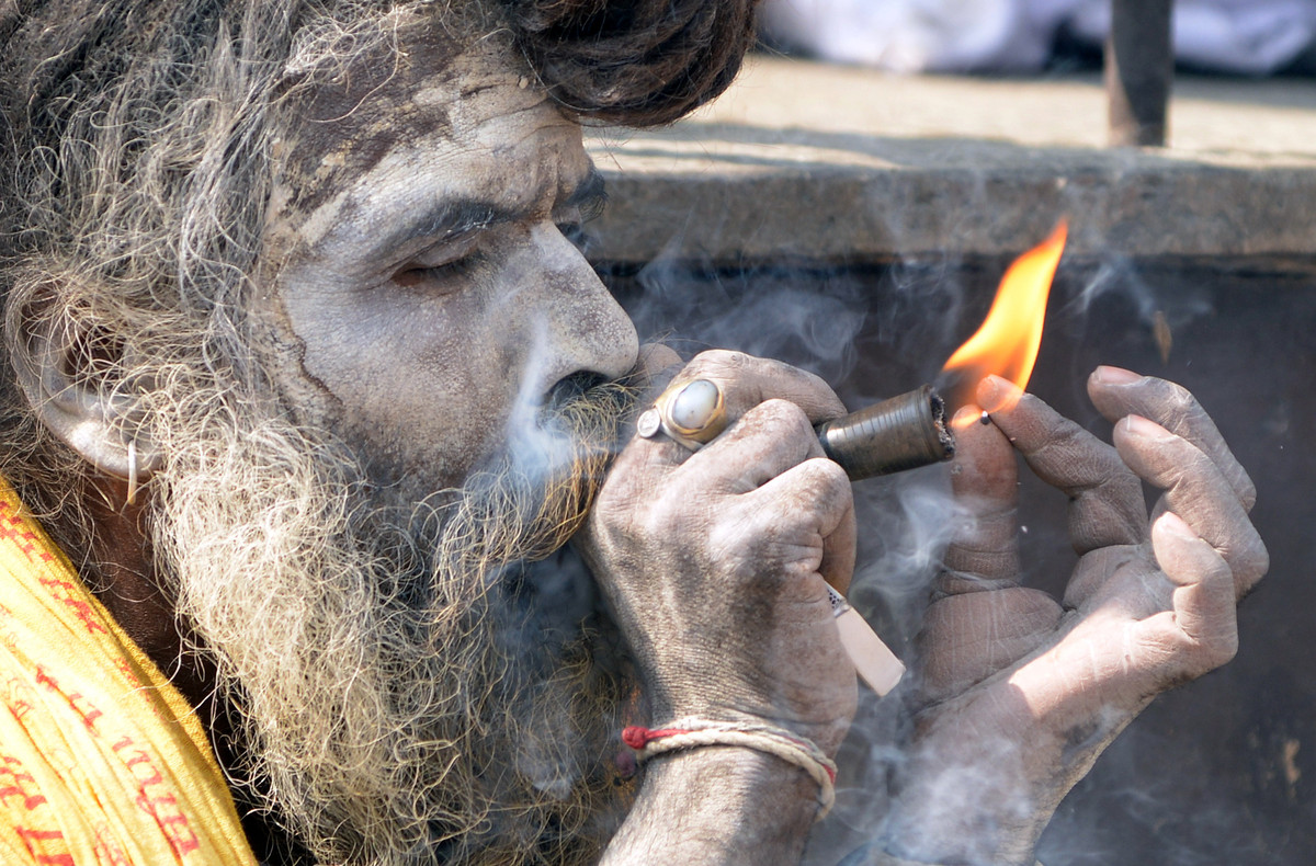 A Sadhu smokes marijuana from a clay pipe as a holy offering for Lord Shiva, the Hindu god of creation and destruction, at th