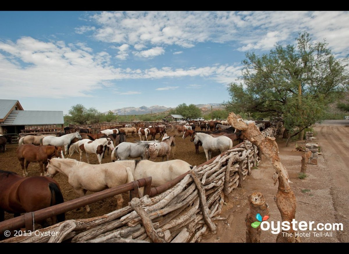 """<strong><a href=""""http://www.oyster.com/tucson/hotels/tanque-verde-ranch/"""" target=""""_hplink"""">Tanque Verde Ranch, Tuscon</a></st"""