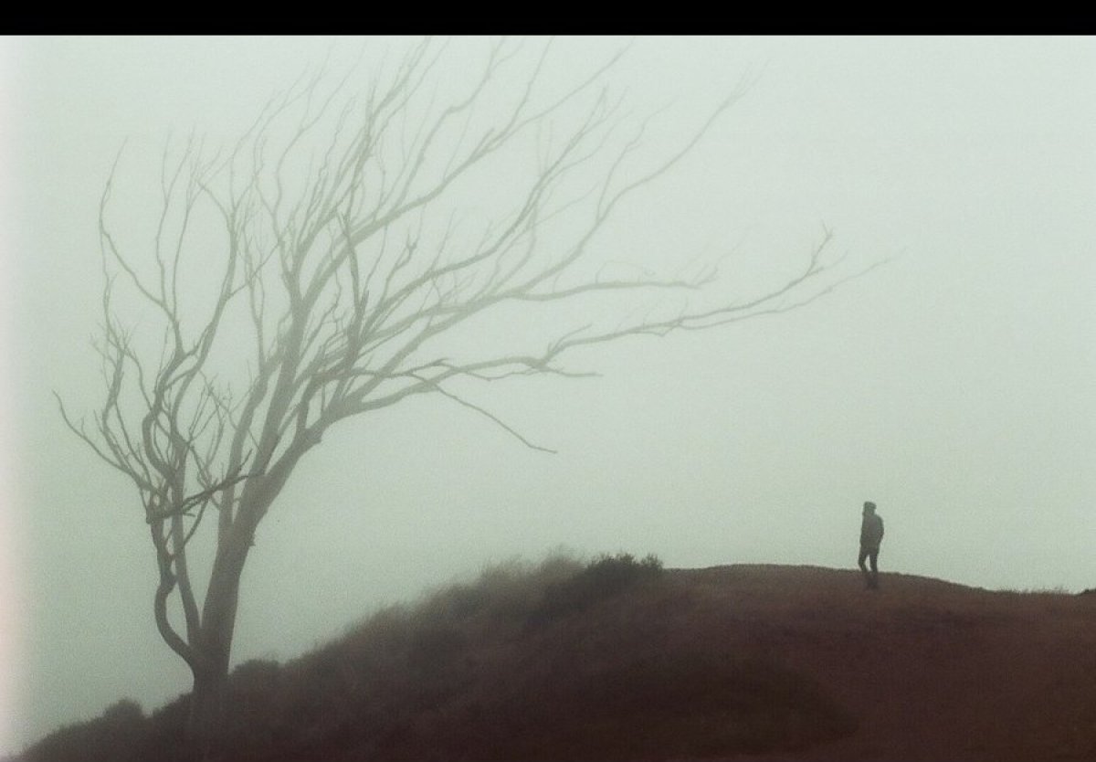 "Photographer <a href=""http://globalyodel.com/yodel/mt-davidson/"" target=""_hplink"">James de Leon</a> heads to a hill on Mt Dav"