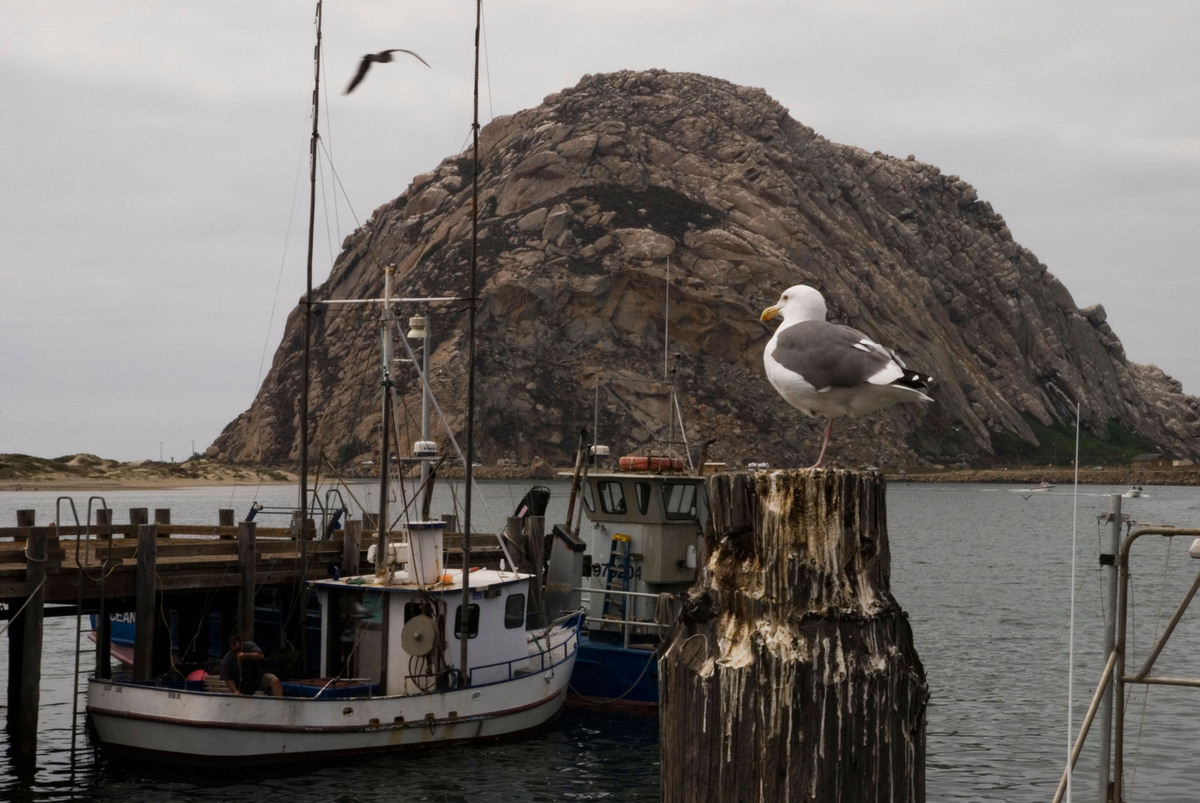 The metro area of San Luis Obispo-Paso Robles in California ranked No. 10 for the highest overall well-being in 2012 with a 7