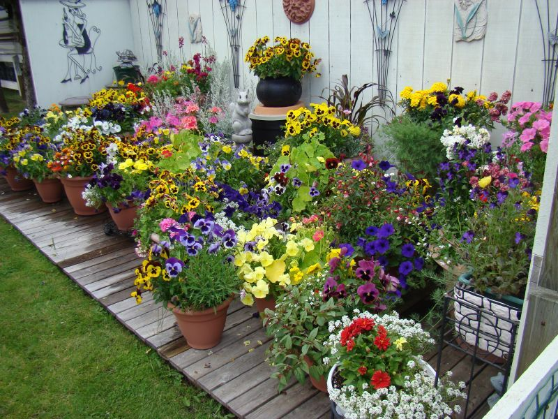 Beau 10 Pretty Container Gardens That Are Perfect For Any Home (PHOTOS) |  HuffPost