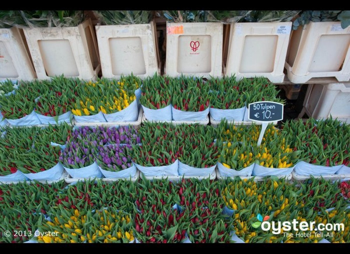 Come April, Amsterdam's streets are lined with flower stands selling colorful tulips, the official country flower of Holland.
