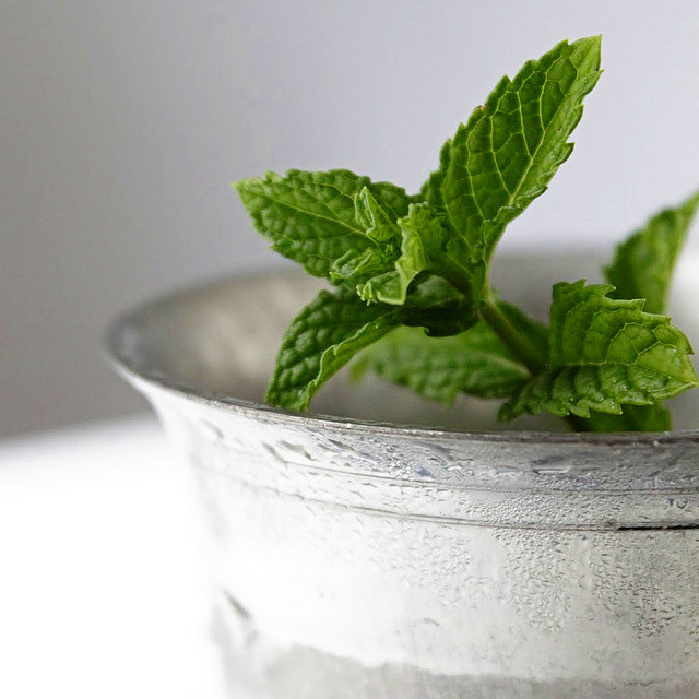 """<strong>Get the <a href=""""http://www.two-tarts.com/2011/09/mint-julep.html"""" target=""""_blank"""">Classic Mint Julep recipe from Two"""