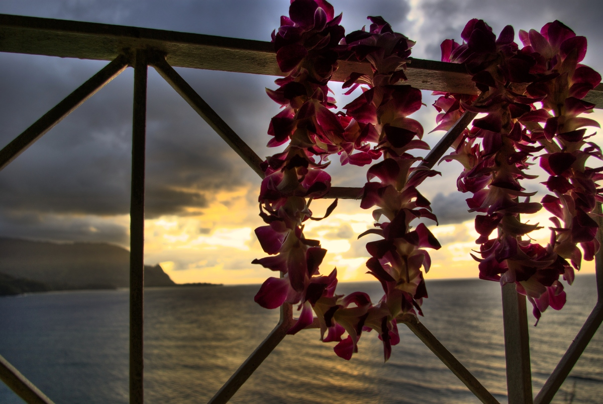 In honor of lei day everything you never knew about leis huffpost happy lei day izmirmasajfo