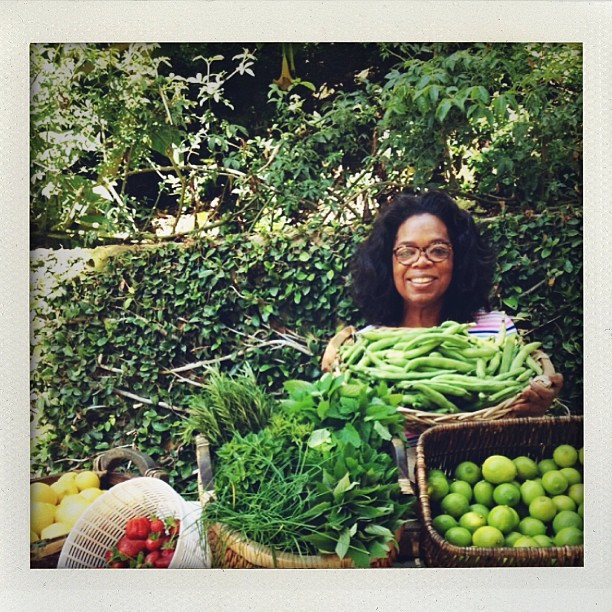 @Oprah, why do you never invite me to Harvest Day? (@laurabrown99)