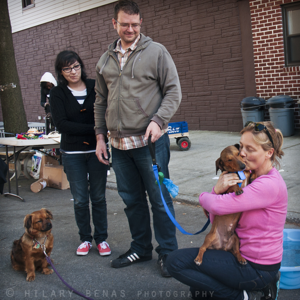 "Courtesy <a href=""http://www.badassbrooklynanimalrescue.com/"" target=""_blank"">Badass Brooklyn Animal Rescue</a>"