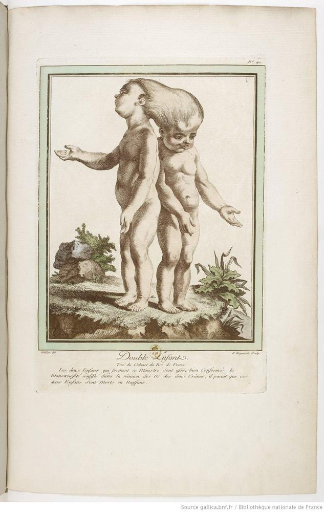 from 'Collection of the Main Monstrosities' by Nicolas-François and Geneviève Regnault 1775