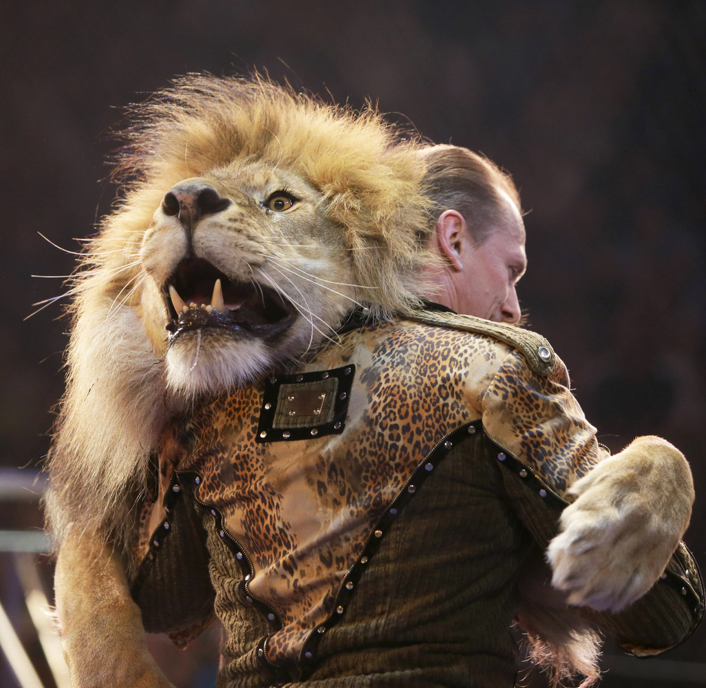 Oleksiy Pinko, a circus artist, dances with a lion during presentation of the new program in Ukraine's National Circus in Kie
