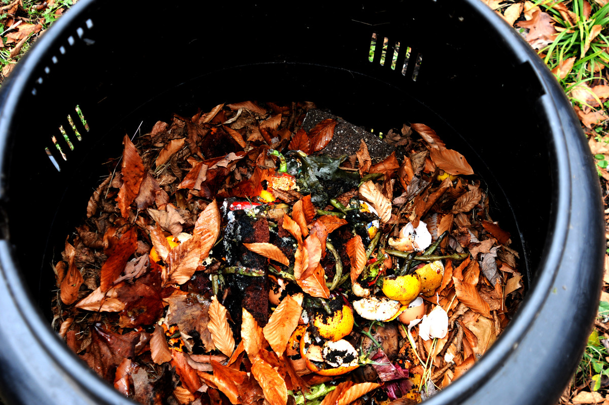 Composting can do wonders for your garden. But making sure your backyard waste is well-contained can be tricky (especially if