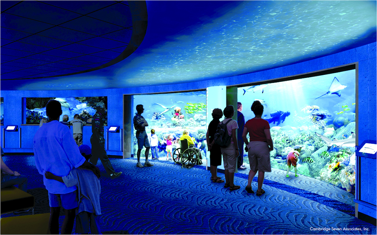 Baltimore National Aquarium 39 S 13 Million Blacktip Reef Shark Exhibit Opens Photos Huffpost