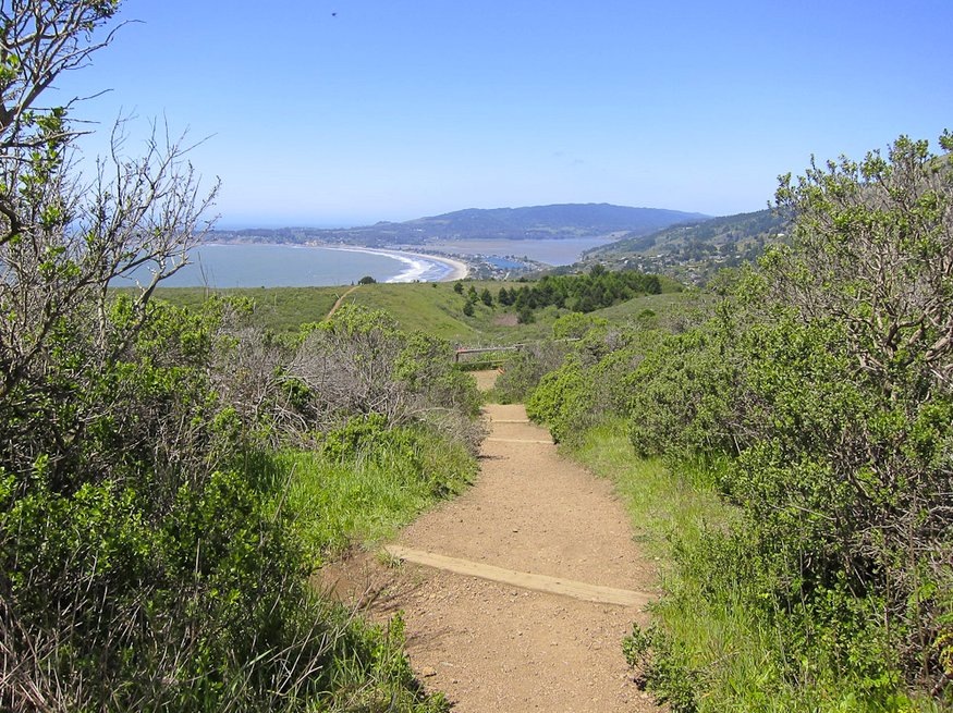 The famous Dipsea Trail is a Northern California favorite. The 14.8-mile round-trip hike is long and strenuous, but you can e