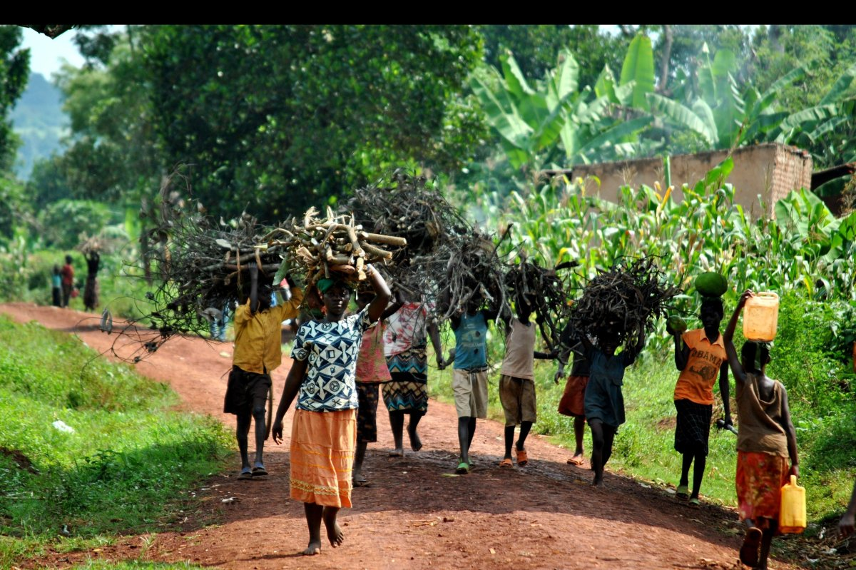 Women in Uganda represent 80% of the agricultural labor force, are responsible for about 80% of the food crop production and
