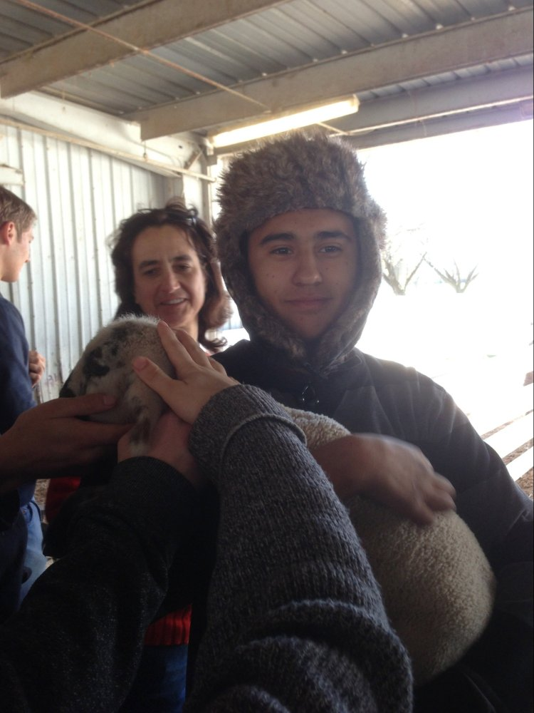 The male student holding a lamb in this picture is Alejandro R. He was a senior at Everest Public High School in Redwood City