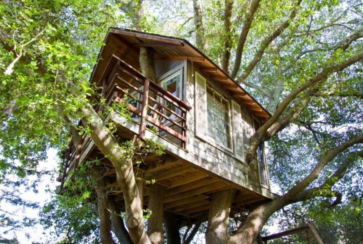 Tree Houses You Can Live In