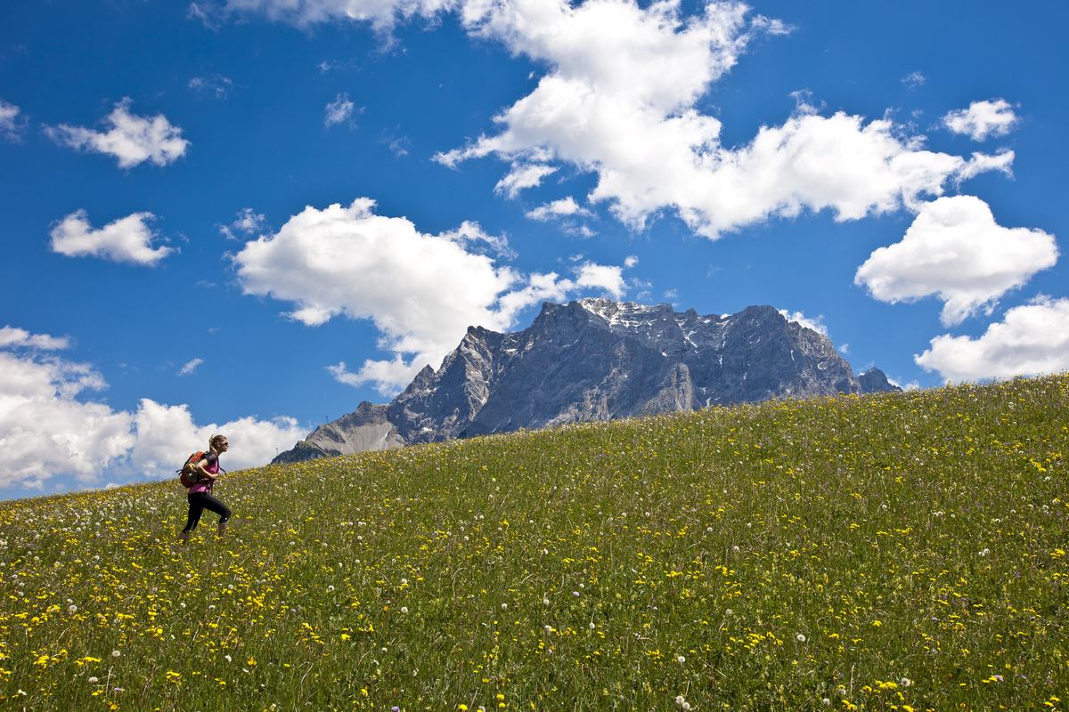 Female hiker is hiking through the grassland next to the mountain of Zugspitze (2962 m) on May 26, 2011 in Lermoos, Austria.
