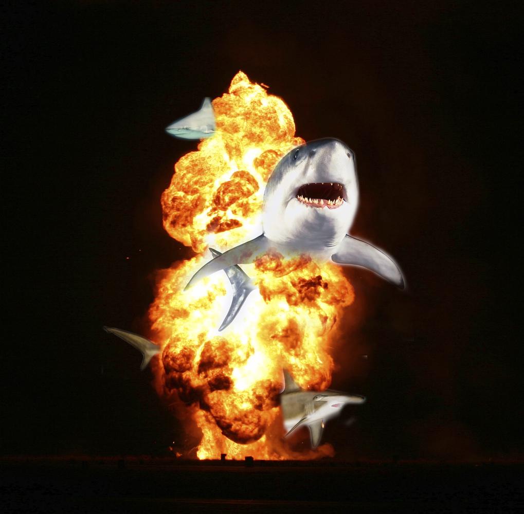 Shark + Explosion = <em>Sharksplosion</em>