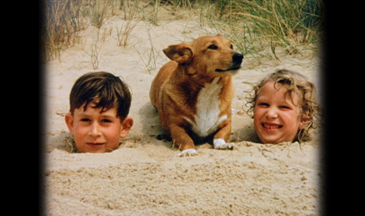 Rather than a buried bone, this pup found a prince and a princess.  <em>In this photo issued Thursday May 31, 2012, by Buckin